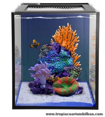 Mini reef acuarios peque os marinos for Acuarios pequenos